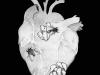 1gr1 - au coeur