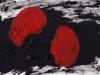 arthurine vincent – la dispute des écorchés