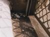 arthurine vincent – fenêtre