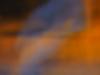 arthurine vincent - spectre