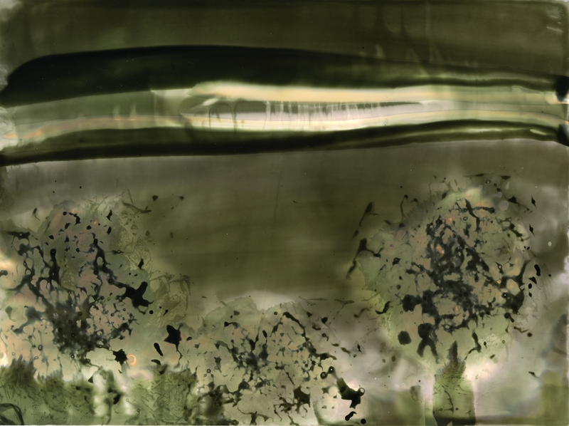 sophie-delizee-chimigramme-12