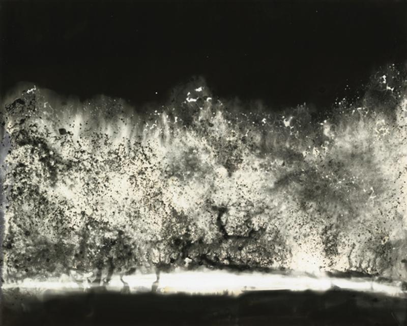 sophie-delizee-chimigramme-14