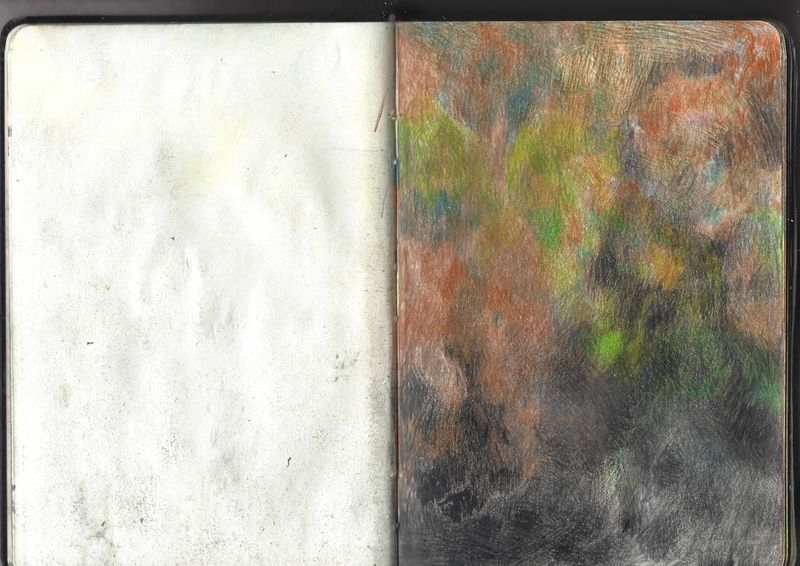 jacques-hemery-lichens-carnet-10