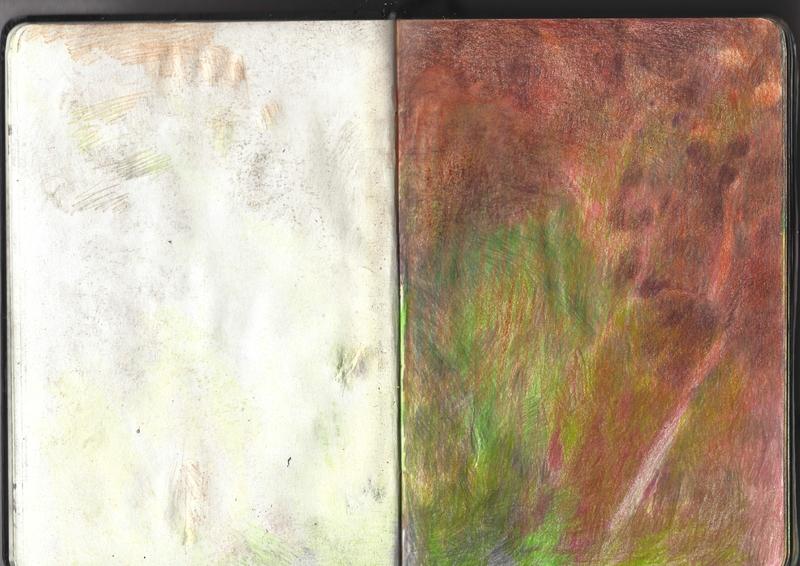 jacques-hemery-lichens-carnet-11