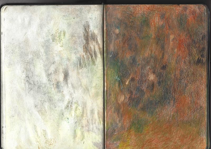 jacques-hemery-lichens-carnet-13