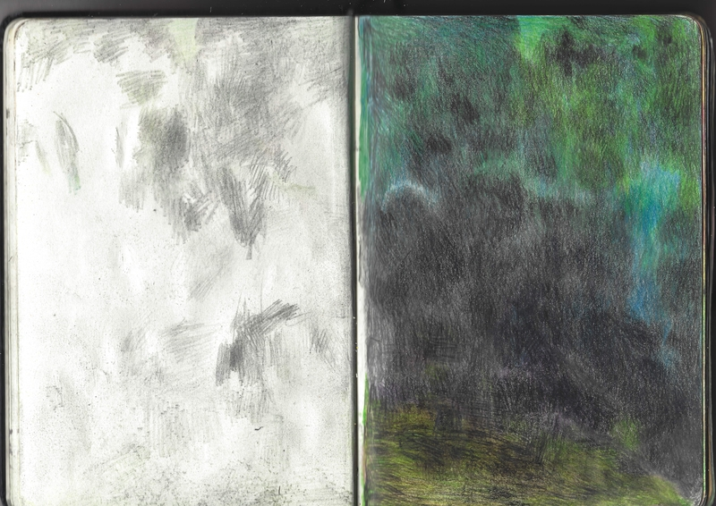 jacques-hemery-lichens-carnet-15