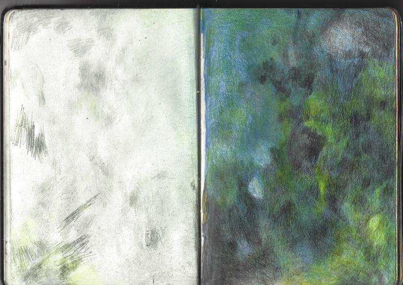 jacques-hemery-lichens-carnet-17