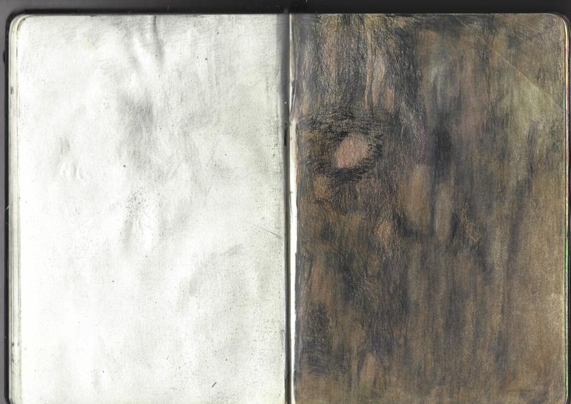 jacques-hemery-lichens-carnet-18