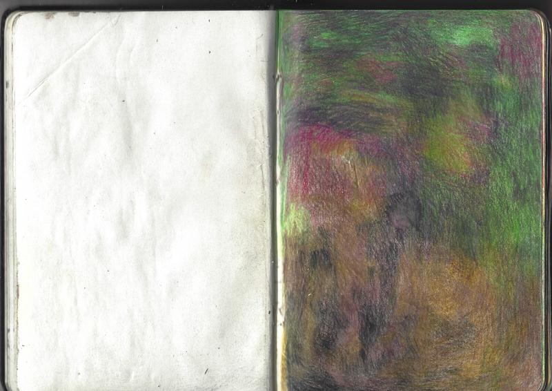 jacques-hemery-lichens-carnet-19