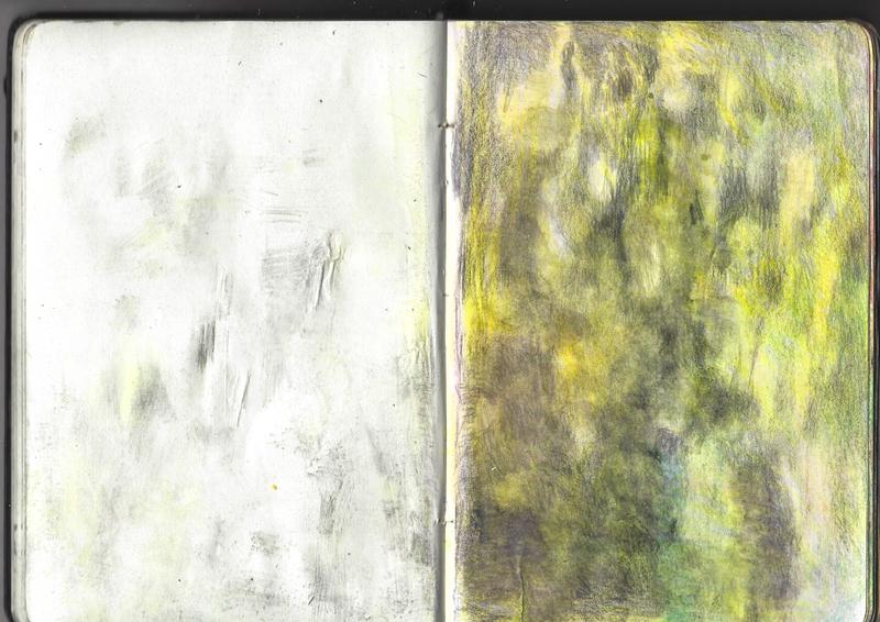 jacques-hemery-lichens-carnet-20