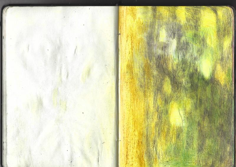 jacques-hemery-lichens-carnet-21
