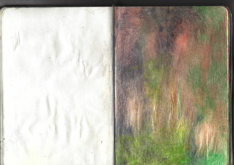 jacques-hemery-lichens-carnet-23