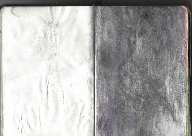 jacques-hemery-lichens-carnet-24
