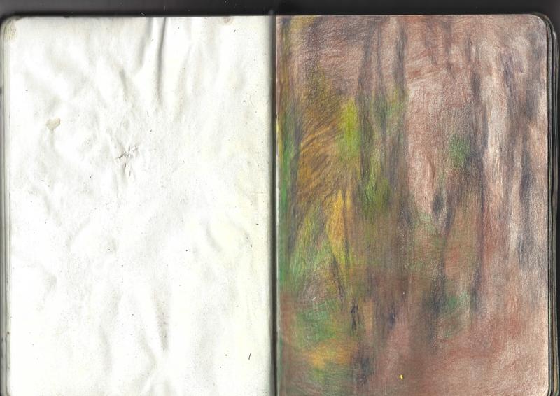 jacques-hemery-lichens-carnet-27