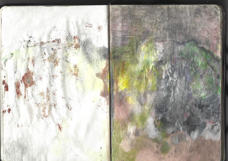 jacques-hemery-lichens-carnet-3