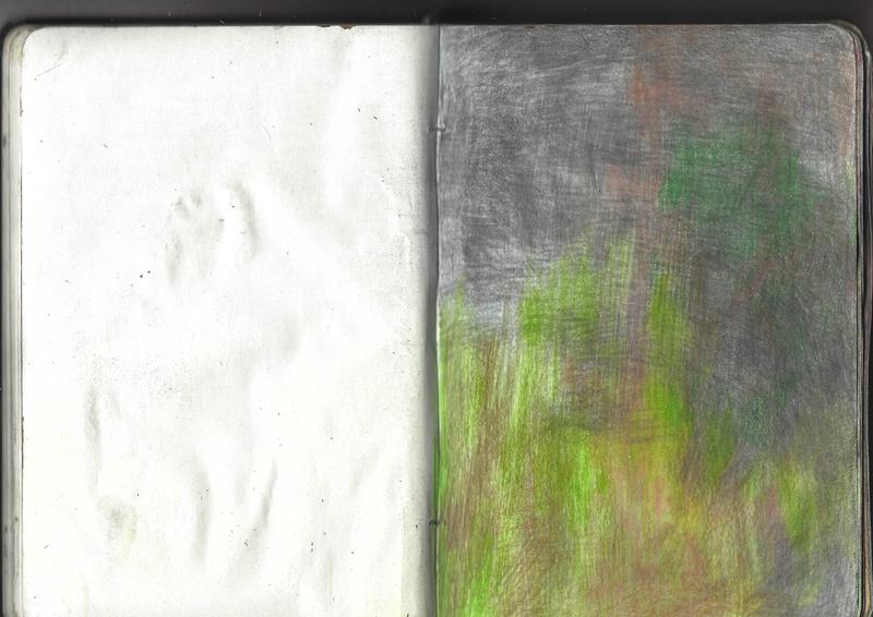 jacques-hemery-lichens-carnet-31