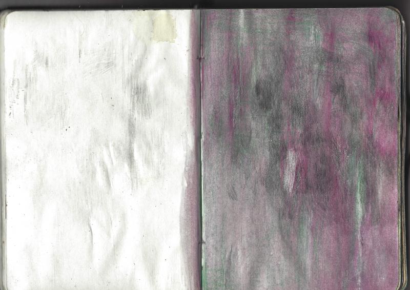 jacques-hemery-lichens-carnet-33
