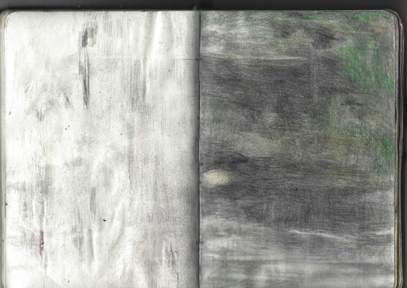 jacques-hemery-lichens-carnet-34
