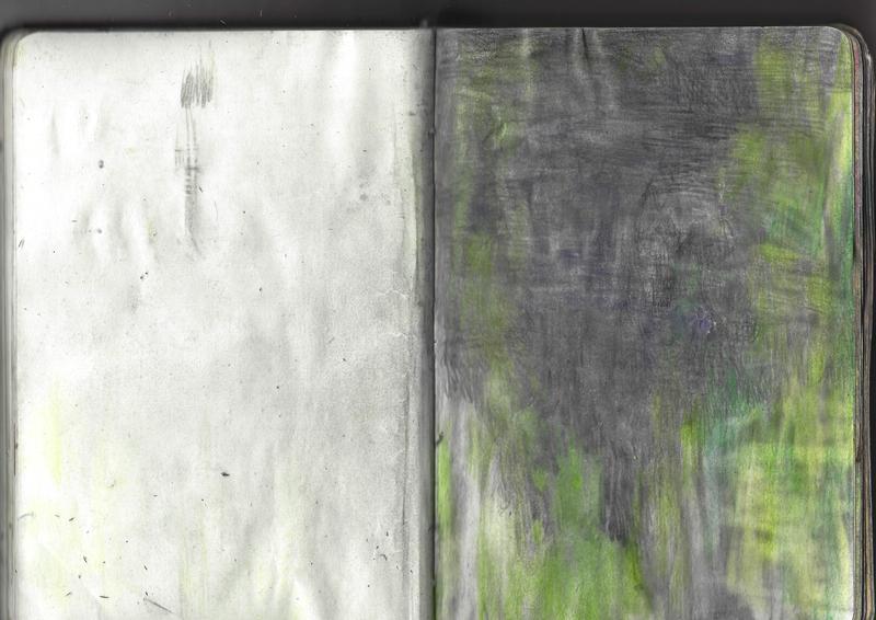 jacques-hemery-lichens-carnet-35