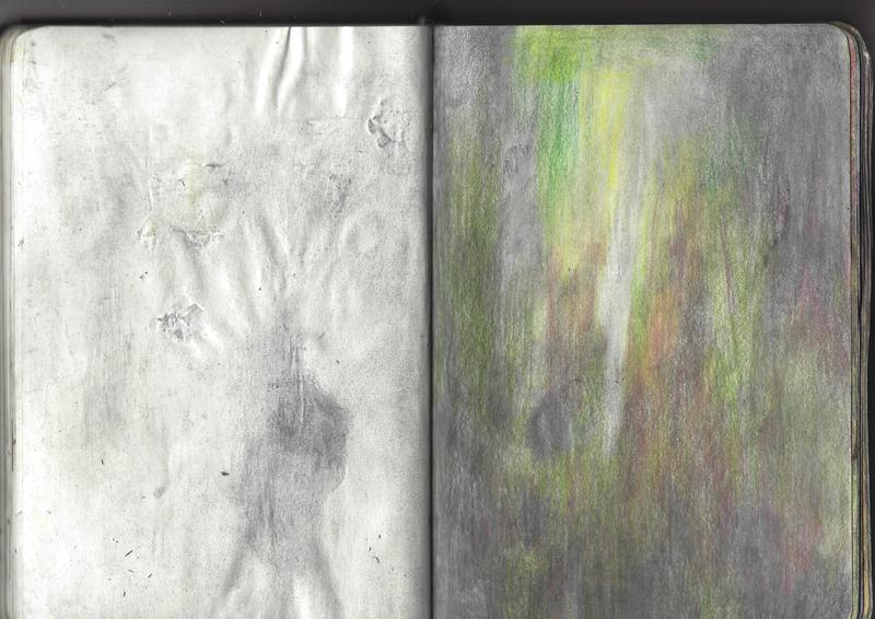 jacques-hemery-lichens-carnet-36