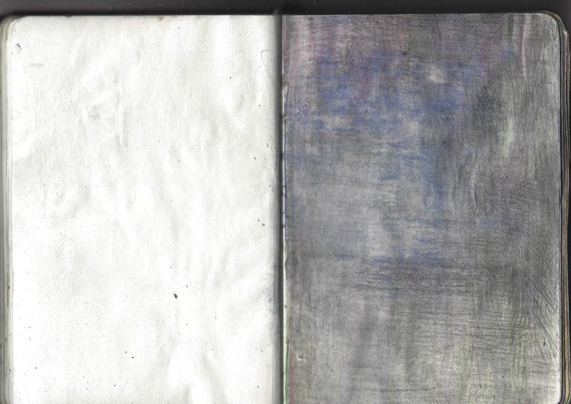 jacques-hemery-lichens-carnet-38