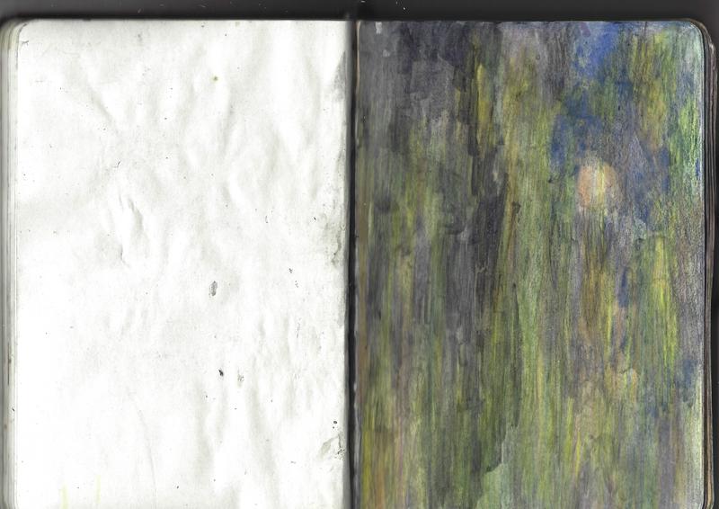 jacques-hemery-lichens-carnet-39