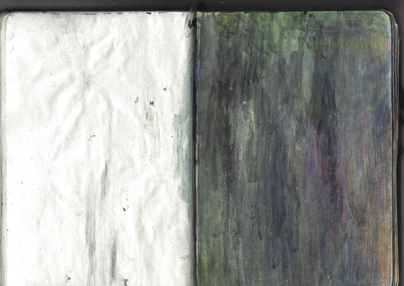 jacques-hemery-lichens-carnet-40