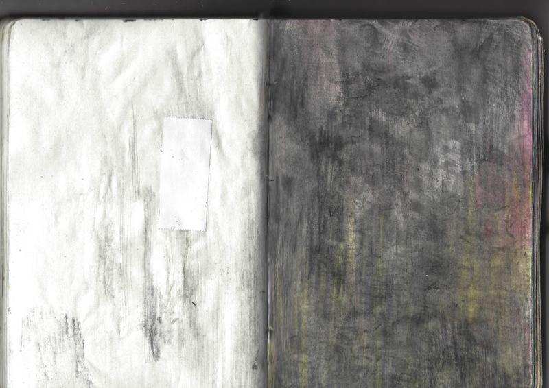 jacques-hemery-lichens-carnet-42