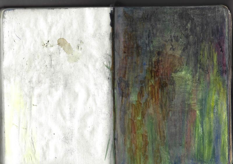 jacques-hemery-lichens-carnet-44