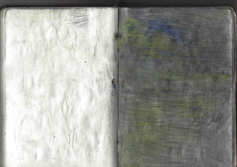 jacques-hemery-lichens-carnet-45