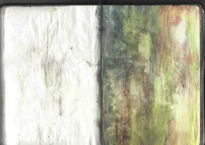 jacques-hemery-lichens-carnet-47