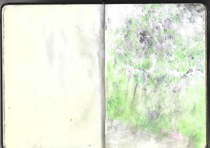 jacques-hemery-lichens-carnet-7