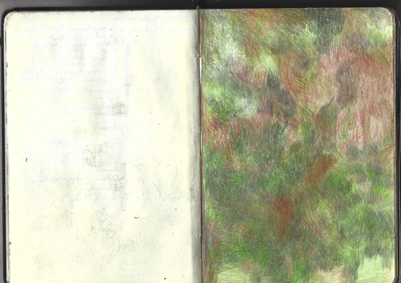 jacques-hemery-lichens-carnet-8