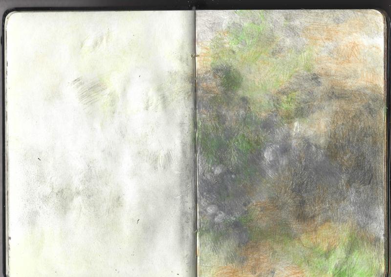 jacques-hemery-lichens-carnet-9