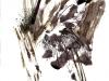 jacques hémery – survie 2012 – 9