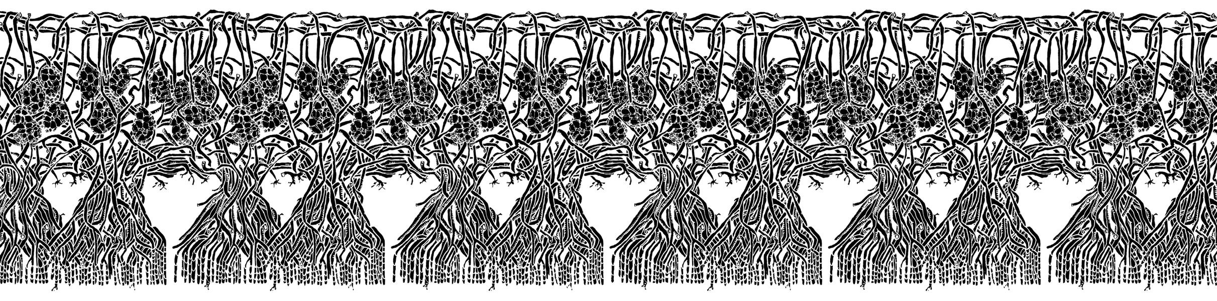 kimberly-clark-motif