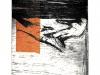 kimberly clark – gravure3