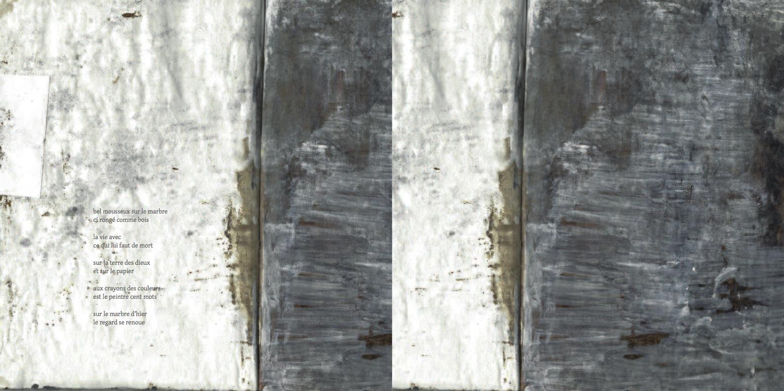lichens14-15