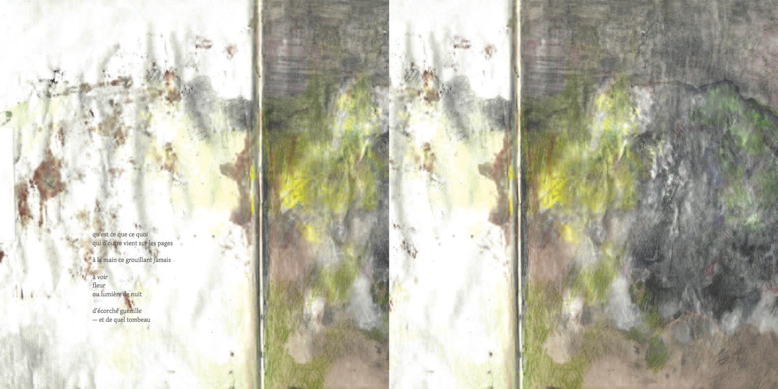 lichens2-3