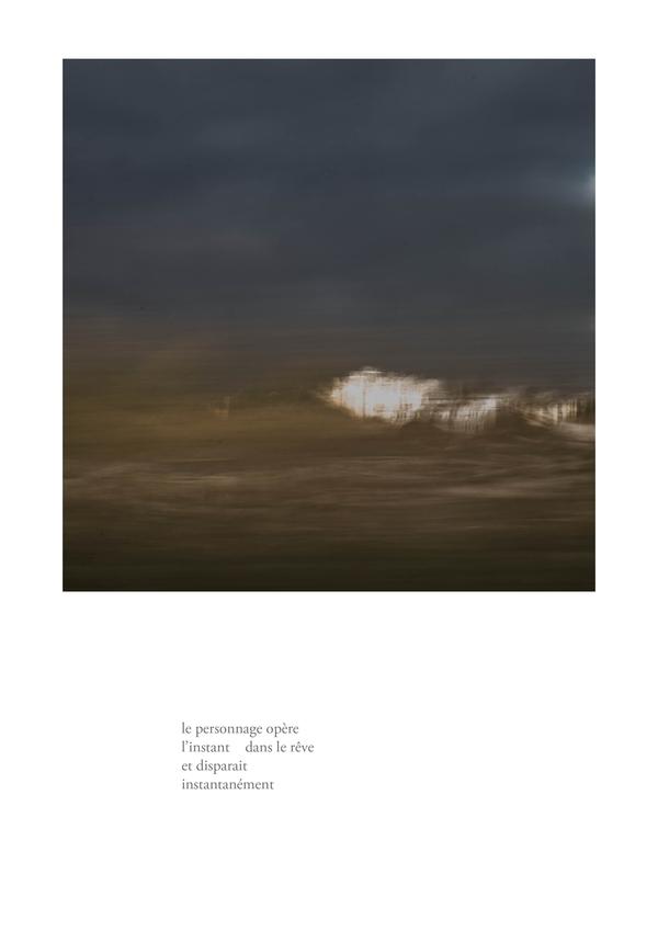 delizee-fabbiani-lithops-18