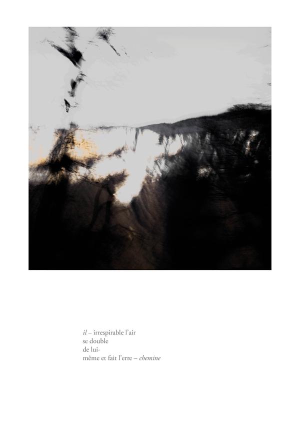 delizee-fabbiani-lithops-3