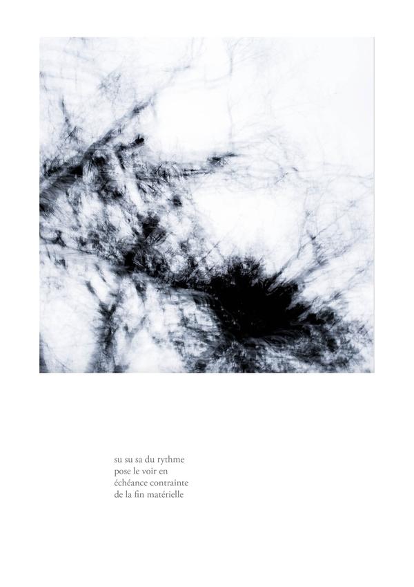 delizee-fabbiani-lithops-6