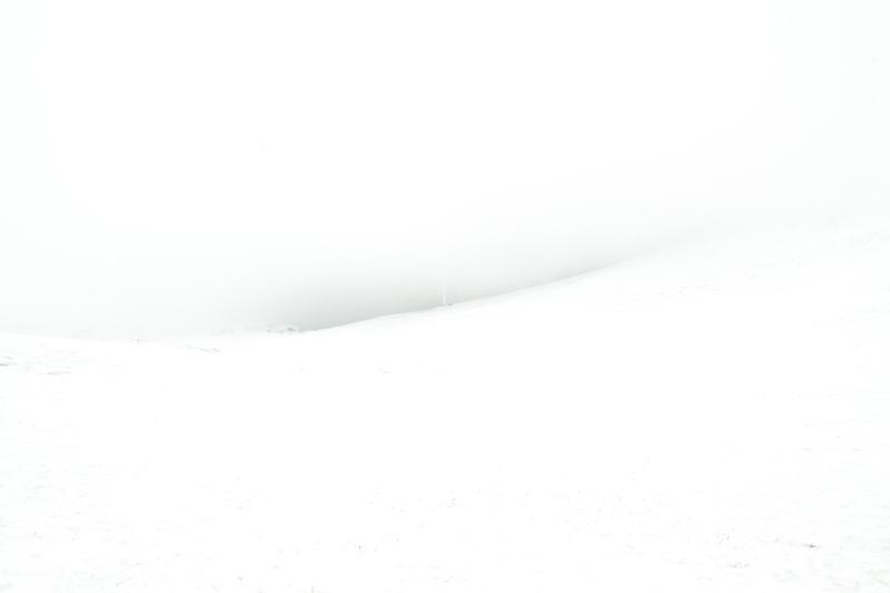 sasha-grege-urle-7